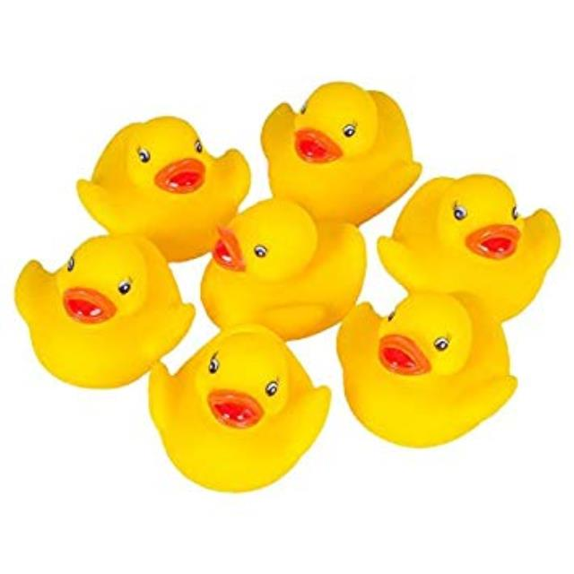Where to find PICK-A-DUCK TUB   DUCKS in State College