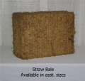 Rental store for STRAW BALE, ASST SIZE in State College PA