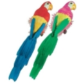 Rental store for 20  PARROT in State College PA