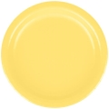 Rental store for PAPER PLATE 7  MIMOSA - 24 COUNT in State College PA
