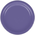 Rental store for PAPER PLATE 9  PURPLE - 24 COUNT in State College PA