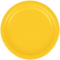 Rental store for PAPER PLATE 9  SCHOOL BUS YELLOW - 24 CT in State College PA
