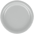 Rental store for PAPER PLATE 9  SHIMMERING SILVER - 24 CT in State College PA