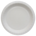Rental store for PAPER PLATE 9  WHITE - 24 COUNT in State College PA
