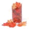 Rental store for MAPLE LEAVES, RED ORG YELL - 100 pcs in State College PA