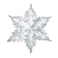 Rental store for METALLIC SILVER SNOWFLAKE, 24 in State College PA