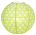 Rental store for POLKA DOT PAPER LANTERN, GREEN in State College PA