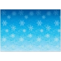 Rental store for FROZEN SNOWFLAKES BACKDROP, 4  X 30 in State College PA