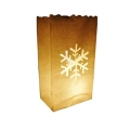 Rental store for SNOWFLAKE LUMINARY BAGS, 10 PK in State College PA