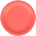 Rental store for PAPER PLATE 9  CORAL - 24 COUNT in State College PA