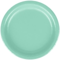 Rental store for PAPER PLATE 9  FRESH MINT - 24 COUNT in State College PA